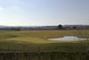 sporturhotel it golf 052